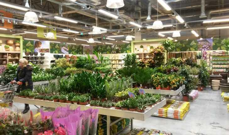 Садовый центр «Дарвин» и «Меббюро» открывают магазин